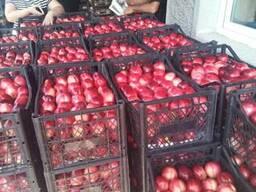 Продам оптом грузинский персик нектарин сезон 2018