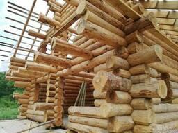 Строительство деревянных домов, срубов. - фото 8