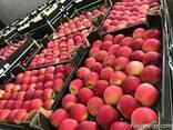 Яблоки из Польши - photo 3