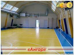Ангары под разные виды спорта: спортивный зал, каток, площад - photo 2