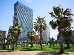 Апартаменты в Orbi Beach Tower
