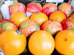 Апельсин Навел