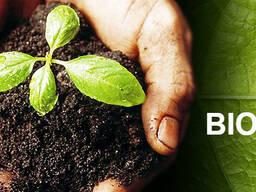 Biohumus / Vermicompost / Natural fertilizer