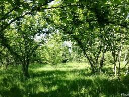 Земельный участок НЕ сельхозназначения