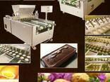 Линия для производства кексов - фото 1