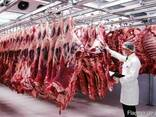 Оптом Мясо Баранина Говядина Свинина. - фото 1
