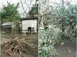 Продается земельный участок и дом в Поти - фото 3