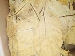 Реализуем оптом на постоянной основе:Табачное сырье из Турци - фото 7