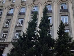 Продается коммерческое помещение тбилиси грузия