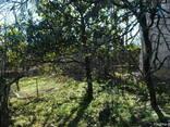 Земельный участок с домом под ремонт - фото 3