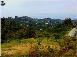 Земельный участок в Батуми, Зеленый Мыс
